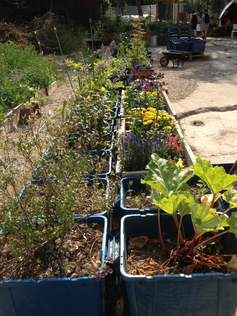 The Mobile Gardeners' Park containers - kenningtonrunoff.com