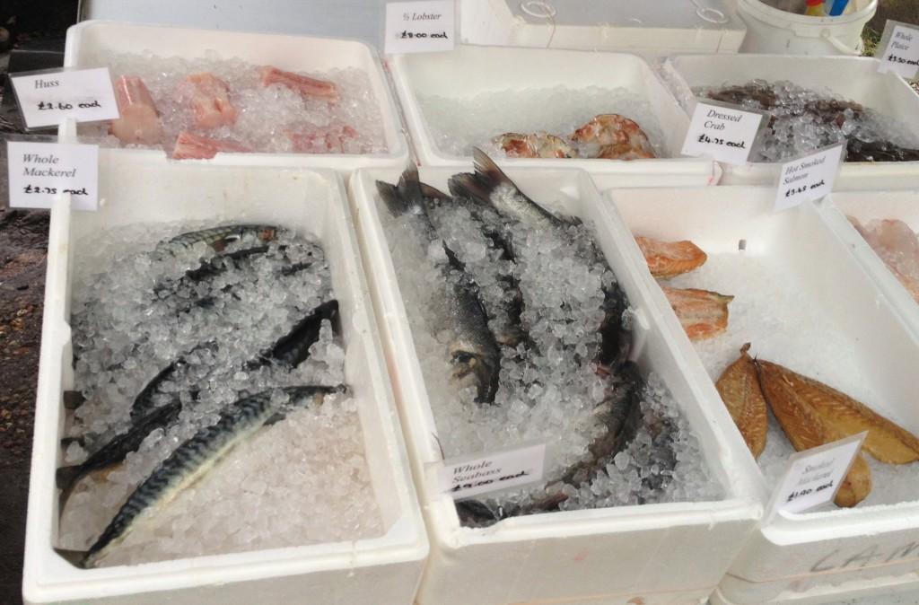 Oval Farmers Market - seafood - kenningtonrunoff.com