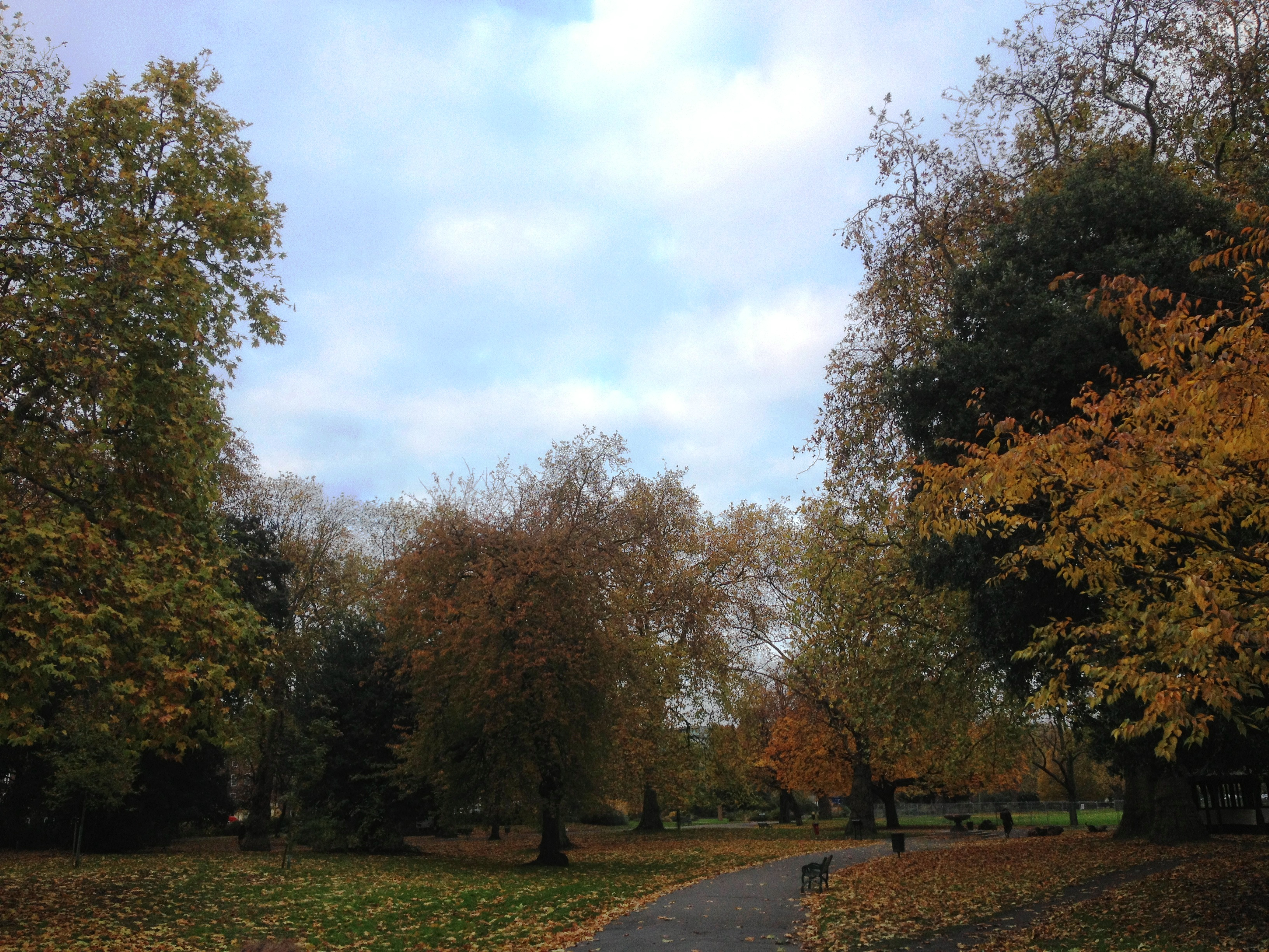 Kennington Park in Autumn - kenningtonrunoff.com