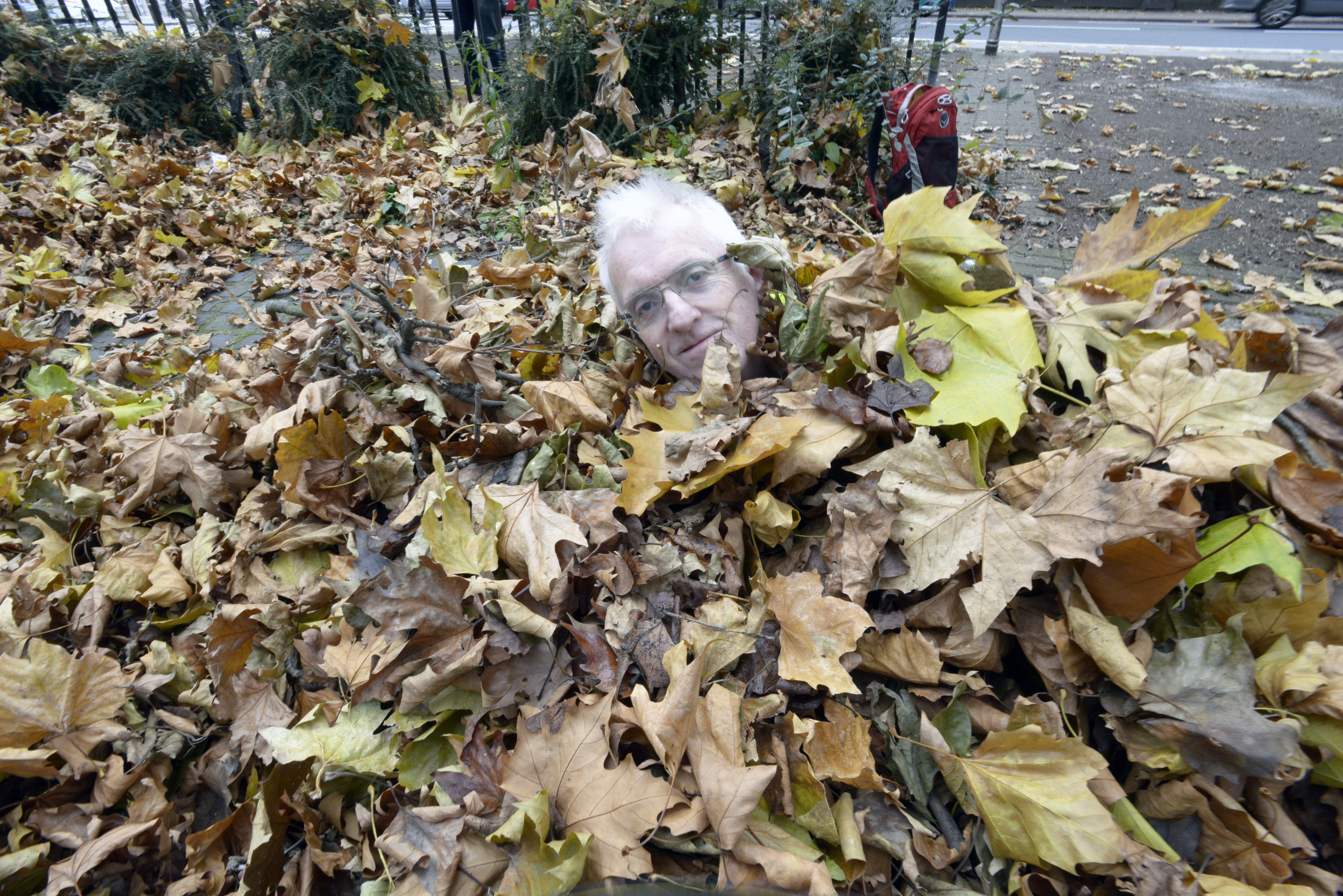 The disembodied head of Pete Waterman at Kennington Triangle, from the Oval Partnership website