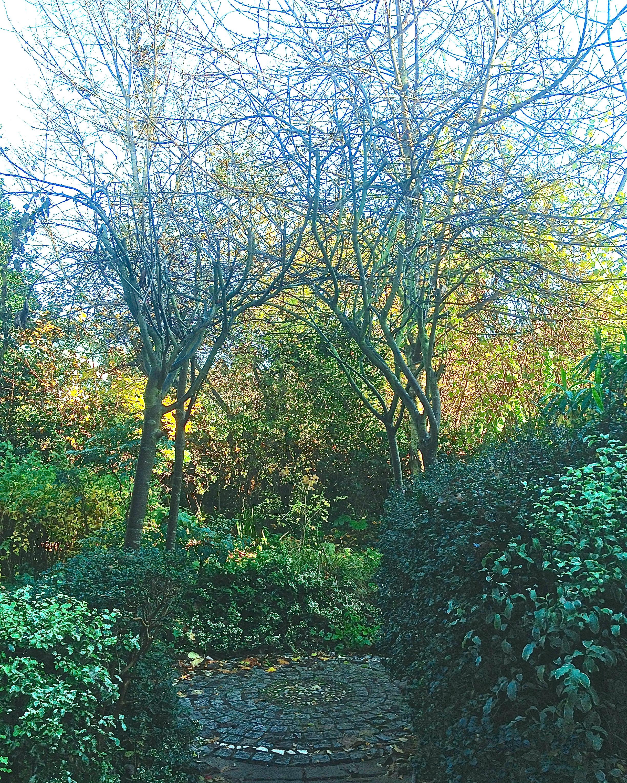 Harleyford Road Community Garden - kenningtonrunoff.com